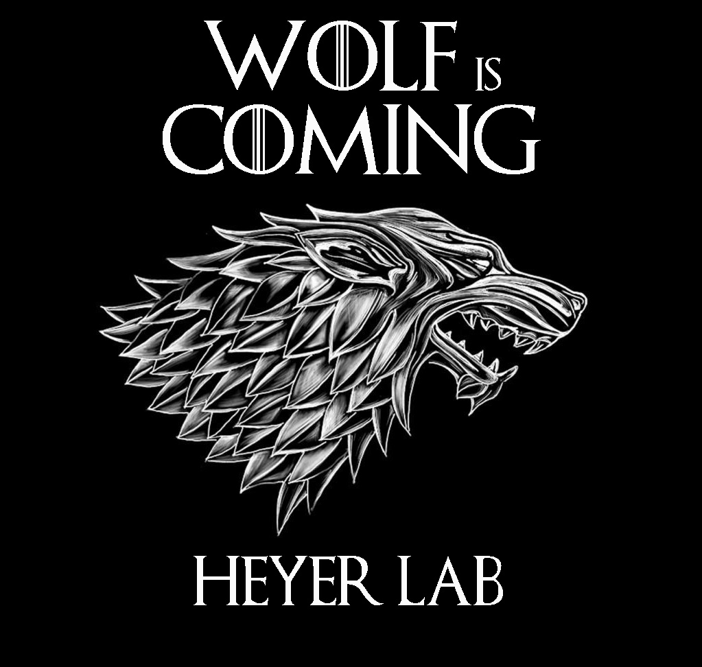 0Wolf is coming